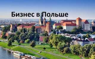 Как открыть бизнес в Польше для украинцев, белорусов и русских