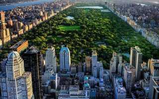 Как устроиться на работу в Нью-Йорке