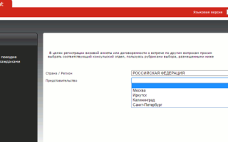 Национальная виза в Польшу: образец заполнения анкеты