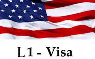 Виза L-1 в США: что нужно для ее получения