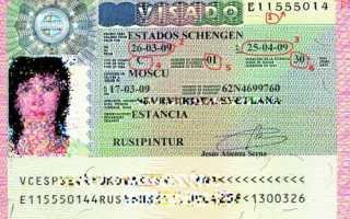 Как правильно считывать информацию с визы