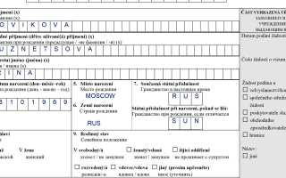 Заполнение анкеты для получения визы в Чехию