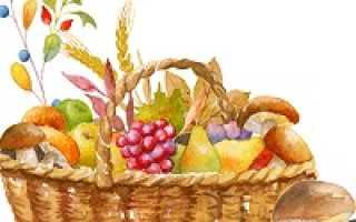 Налог на сбор ягод и грибов