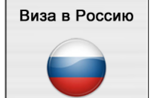 Как оформляются электронные визы в Россию