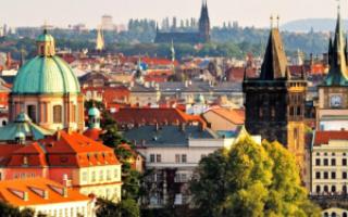 Бизнес-виза в Чехию: документы и сроки оформления