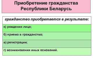 Получение и оформление гражданства Беларуси