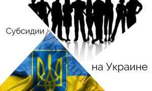 Субсидии и льготы на Украине: образец заполнения декларации и заявления