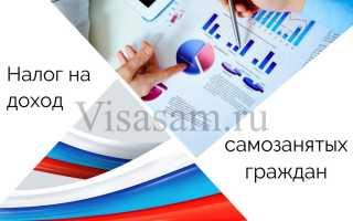 Налог на доходы самозанятых граждан РФ: виды деятельности, регионы, как платить
