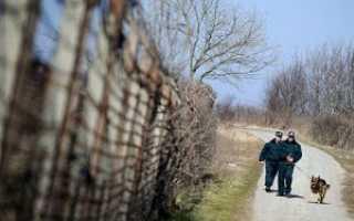 Обжалование депортации из России