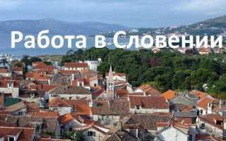 Как найти работу в Словении
