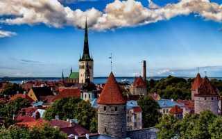 Электронное бронирование очереди на границе с Эстонией