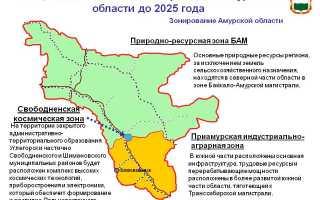Средняя зарплата в Амурской области