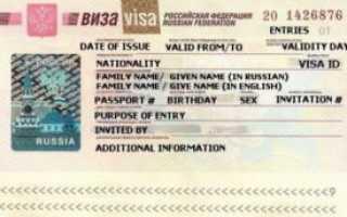 Порядок получения гуманитарной визы в Россию