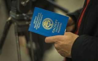 Получение и оформление гражданства Киргизии