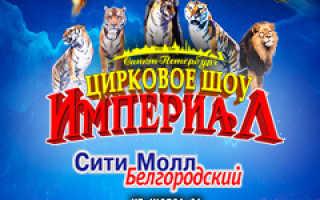 Средняя зарплата в Белгороде