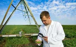Средняя зарплата агрономов в различных городах России