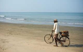 Стоимость оформления электронной визы в Индию