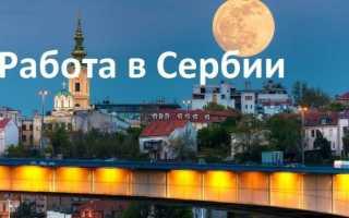 Как найти работу в Сербии