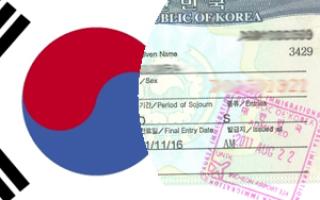 Как получить визу G1 и статус беженца в Южной Корее для русских